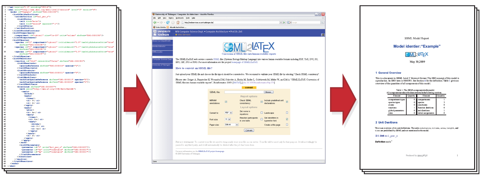 Sbml2latex the online version ccuart Choice Image